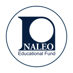NALEO Elect's New Board